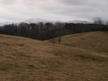 Campo e montanhas no inverno Fotografia de Stock