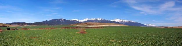 Campo e montanhas verdes de Rohace, Eslováquia Fotos de Stock