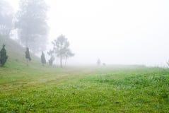 Campo e nebbia fotografie stock libere da diritti