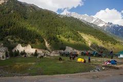 Campo e paesaggio dell'alpinista Fotografia Stock Libera da Diritti