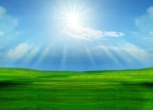 Campo e sol de grama bonito que brilham no céu azul Imagens de Stock Royalty Free