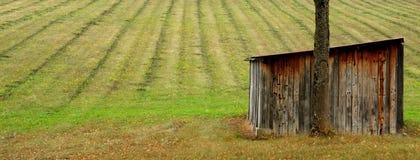 Campo e tettoia Fotografia Stock