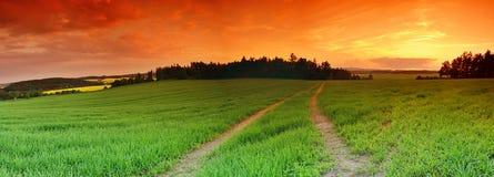 Campo e tramonto Immagini Stock Libere da Diritti