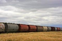 Campo e treno di frumento Immagini Stock