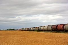 Campo e treno di frumento fotografia stock libera da diritti