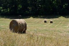 Campo em Geórgia rural, EUA imagem de stock