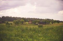 Campo em Lituânia imagem de stock