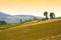 Campo em Sicília fotos de stock