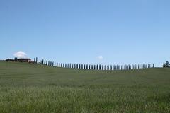 Campo em Toscânia Foto de Stock