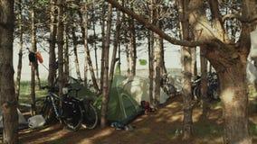 Campo en bosque de la mañana cerca del mar Cocinar la comida en una hoguera en vida del forestCamp traveling almacen de metraje de vídeo