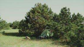 Campo en bosque de la mañana cerca del mar Cocinar la comida en una hoguera en vida del forestCamp traveling almacen de video