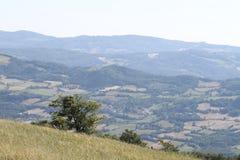 Campo en el Apennines boloñés Imagenes de archivo