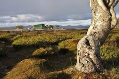 Campo en el desierto de Noruega Fotografía de archivo