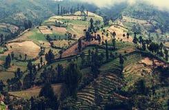 Campo en Indonesia fotos de archivo libres de regalías
