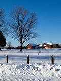 Campo en invierno Fotos de archivo libres de regalías