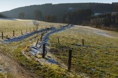 Campo en invierno foto de archivo