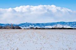 Campo en la pradera bajo nieve fotografía de archivo libre de regalías