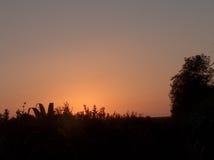Campo en la puesta del sol Foto de archivo libre de regalías