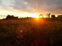 Campo en la puesta del sol Fotos de archivo libres de regalías