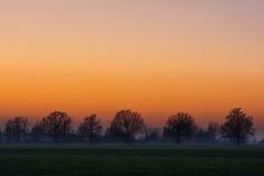 Campo en la salida del sol Fotos de archivo