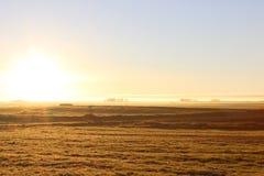 Campo en la salida del sol Imágenes de archivo libres de regalías