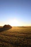 Campo en la salida del sol Imagen de archivo libre de regalías