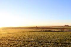 Campo en la salida del sol Fotografía de archivo