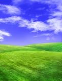Campo en la sol ilustración del vector