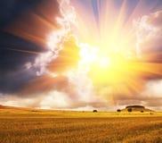 Campo en puesta del sol Foto de archivo