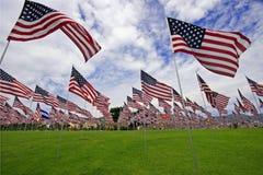 Campo enchido com as bandeiras americanas Imagem de Stock Royalty Free