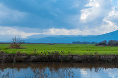 Campo entre la reunión de dos ríos Foto de archivo libre de regalías