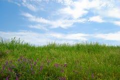 Campo erboso con il cielo nuvoloso e l'erba verde Fotografia Stock Libera da Diritti