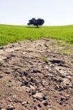 Campo erosionado Imagenes de archivo