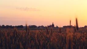 Campo escénico con la iglesia vieja en fondo en la puesta del sol de oro almacen de video
