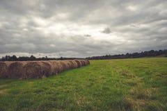 Campo escuro antes da tempestade Imagens de Stock Royalty Free