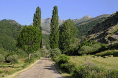 Campo, España Imágenes de archivo libres de regalías