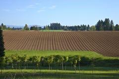 Campo fértil Oregon rural. imagen de archivo