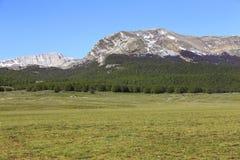Campo Felice Plateau στο Abruzzo, Ιταλία Στοκ εικόνες με δικαίωμα ελεύθερης χρήσης
