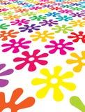 Campo floral Fotografia de Stock Royalty Free