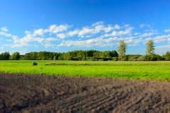 Campo, floresta e nuvens arados no céu azul - borrão e cores de contraste fotografia de stock royalty free