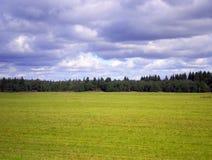 Campo, foresta e cielo. Fotografie Stock Libere da Diritti
