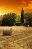 Campo francés de la paja Imagen de archivo libre de regalías