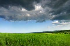 Campo fresco verde, cielo drammatico blu Fotografia Stock Libera da Diritti