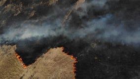 Campo, fuego y humo ardiendo, visi?n superior Impacto negativo en la naturaleza metrajes