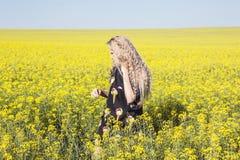 Campo giallo di fioritura Fotografia Stock Libera da Diritti
