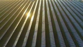 Campo grande de los paneles solares fotovoltaicos azules en la puesta del sol Silueta del hombre de negocios Cowering El volar de almacen de video