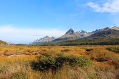 Campo hermoso con las montañas en el fondo Fotos de archivo libres de regalías