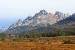Campo hermoso con las montañas en el fondo Imagen de archivo libre de regalías