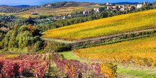 Campo hermoso de Toscana - wineyards en la región de Chianti, él imagen de archivo