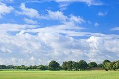 Campo holandês com árvores verdes, o céu azul e as nuvens dadas forma dramáticas Imagem de Stock